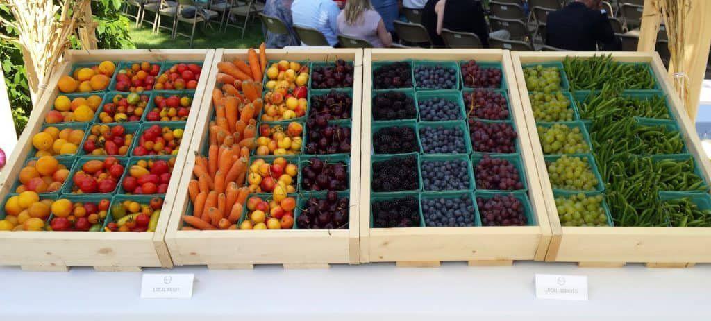 backyard micro wedding farmers market apps